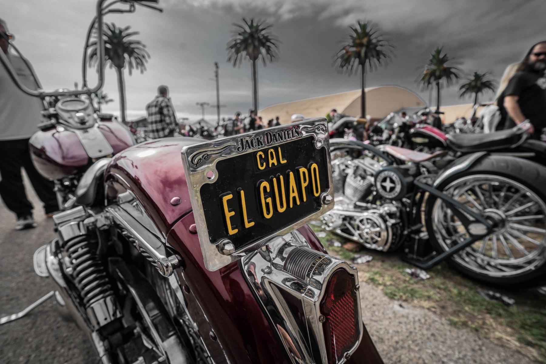 ElGuapo-1-of-1
